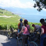 BIKING IN THE VINEYARDS